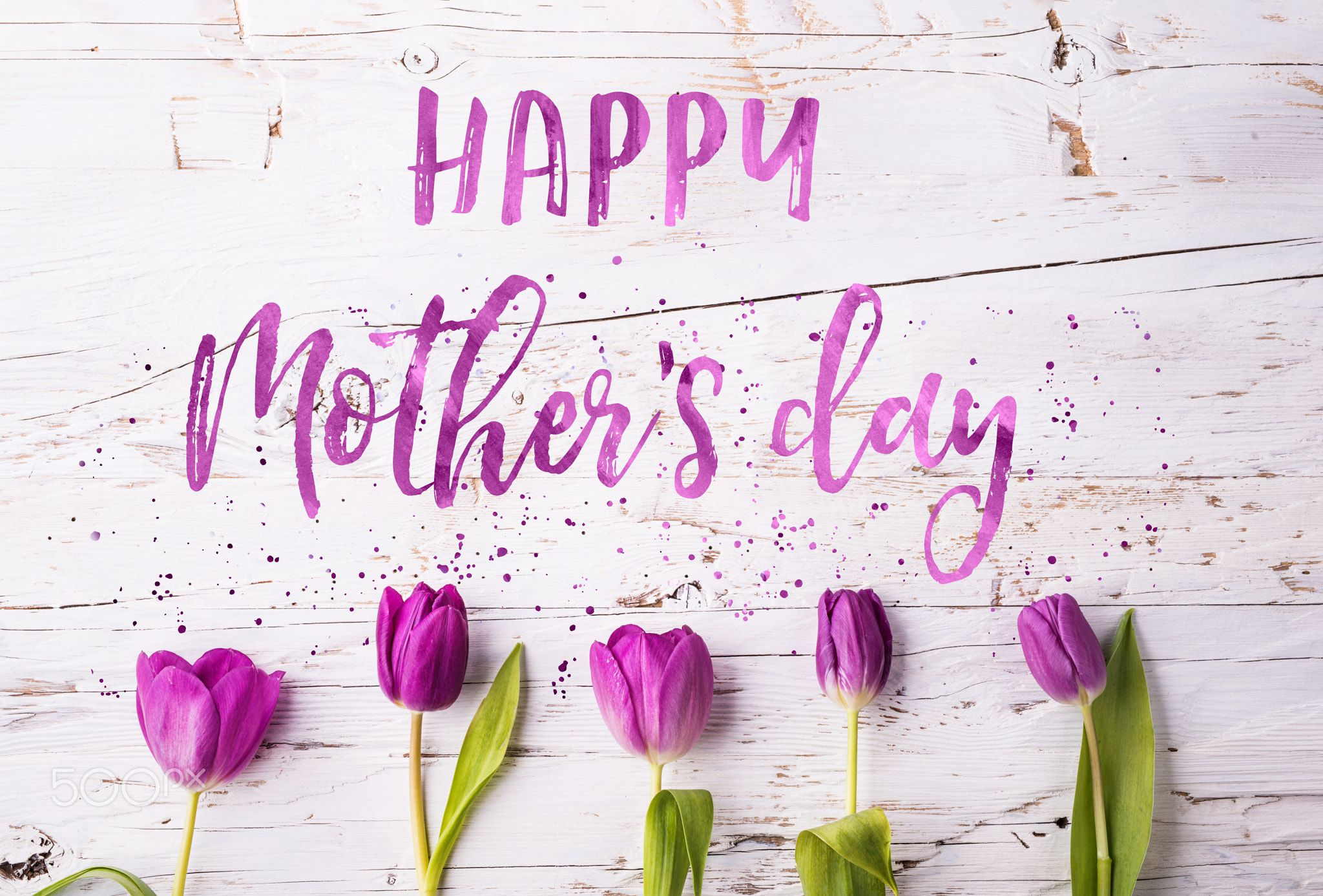 Happy Mothers Day Sign And Flowers Composition Studio Shot Happy Mothers Day Sign And Purp Mothers Day Signs Happy Mothers Day Wishes Happy Mothers Day Mom