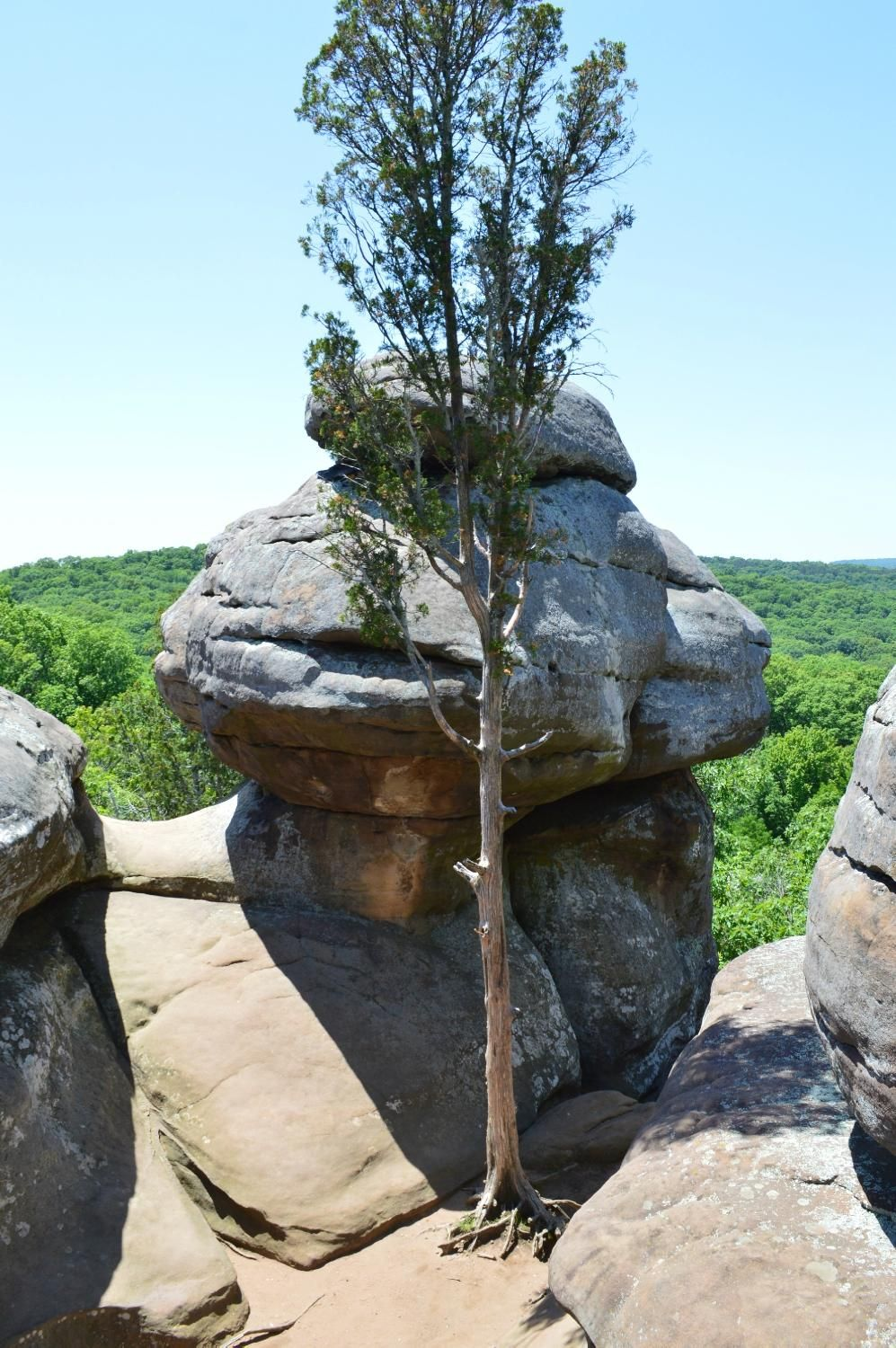 Garden of the Gods(Harrisburg, IL) Top Tips Before You Go