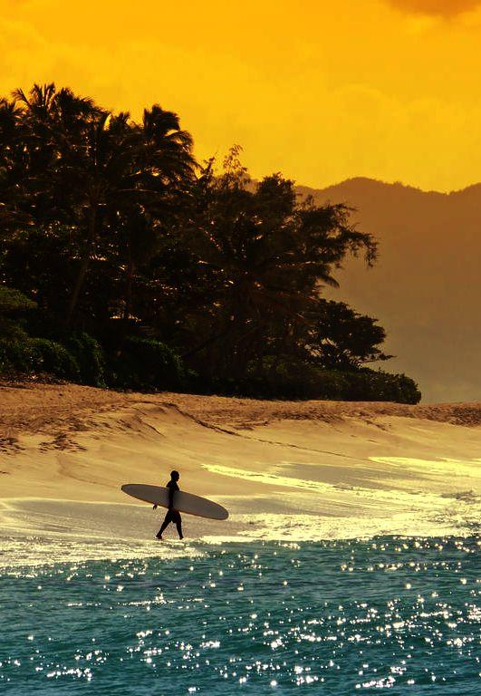 Not Found Surfing Surf Beach Beach Life