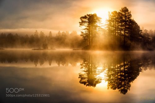 Golden hour by walterurnes  Fog Golden hour Lake Mist Sun Sunrise Golden hour walterurnes