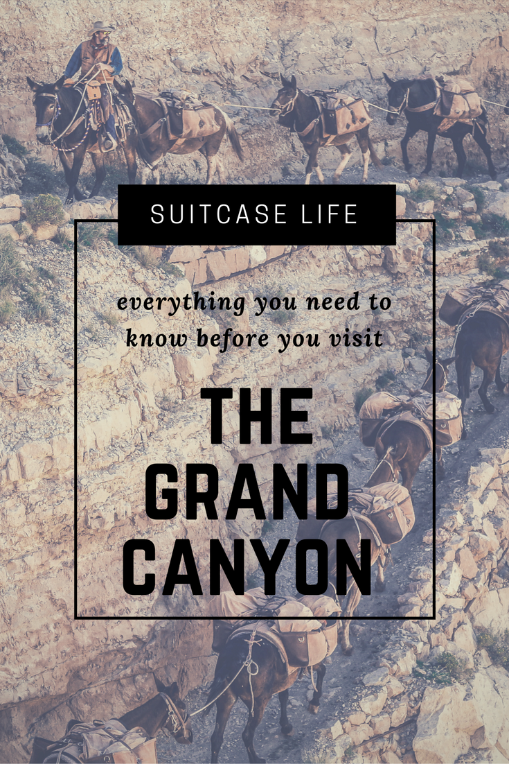 ONE OF THE WORLD'S SEVEN NATURAL WONDERS - THE GRAND CANYON