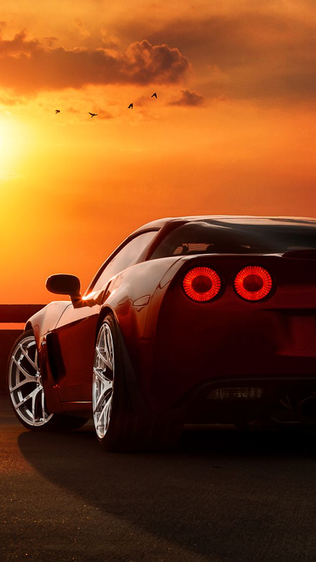 Ferrari Tail Lights Sunset Birds Iphone  Wallpaper Freebestpicture Com Ferrari Tail Lights Sunset Birds Iphone  Wallpaper
