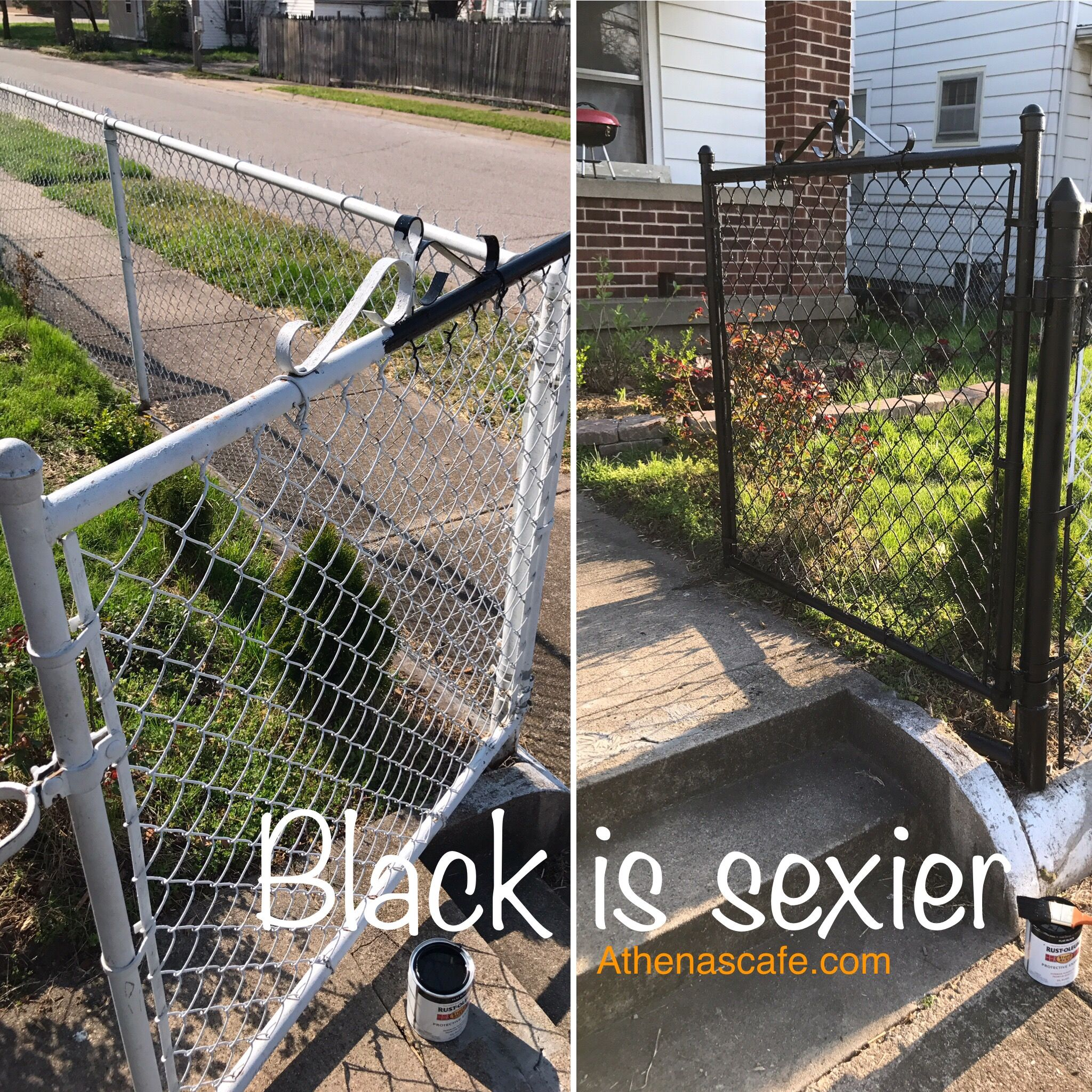 Painting My Metal Chainlink Fence From White To Black Athenascafe Com Painted Chain Link Fence Chain Link Fence Fence Decor