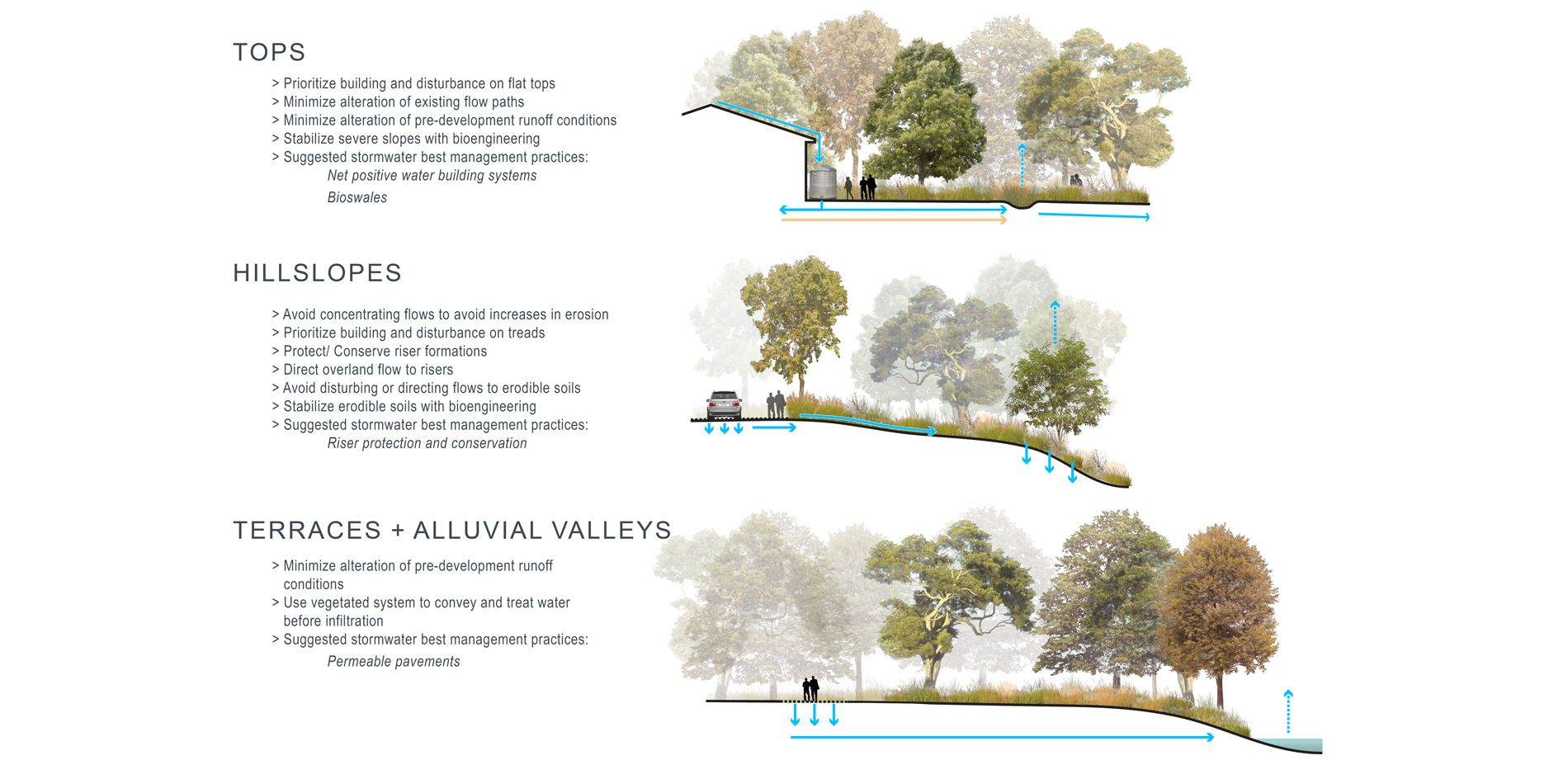 Water Management Vegetation Land Use And Site Development