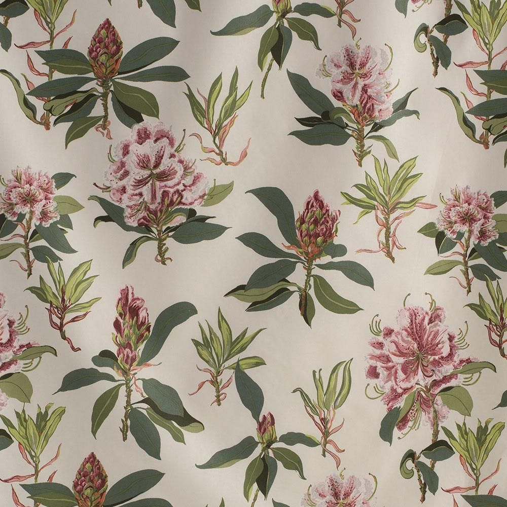 Rhododendron Sprig (Jean Monro) for Clarence House