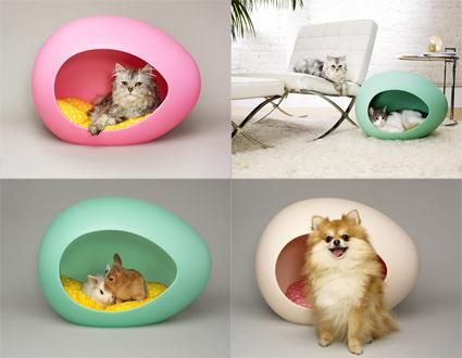 The Pei Pod For Small Pets Engenius My Lil Chihuahua Needs One Asap Small Pets Cat Bed Pets
