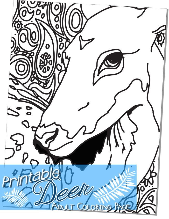 Deer Adult Coloring Page This is a one page pdf downloadable coloring page. I had fun making the last adult color page I did so I made another. This is my second attempt at the adult coloring page…