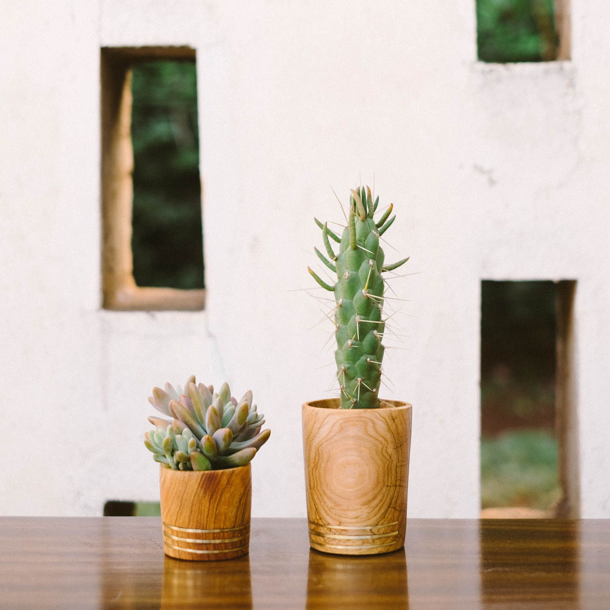 The perfect wooden planters, inlaid with brass and