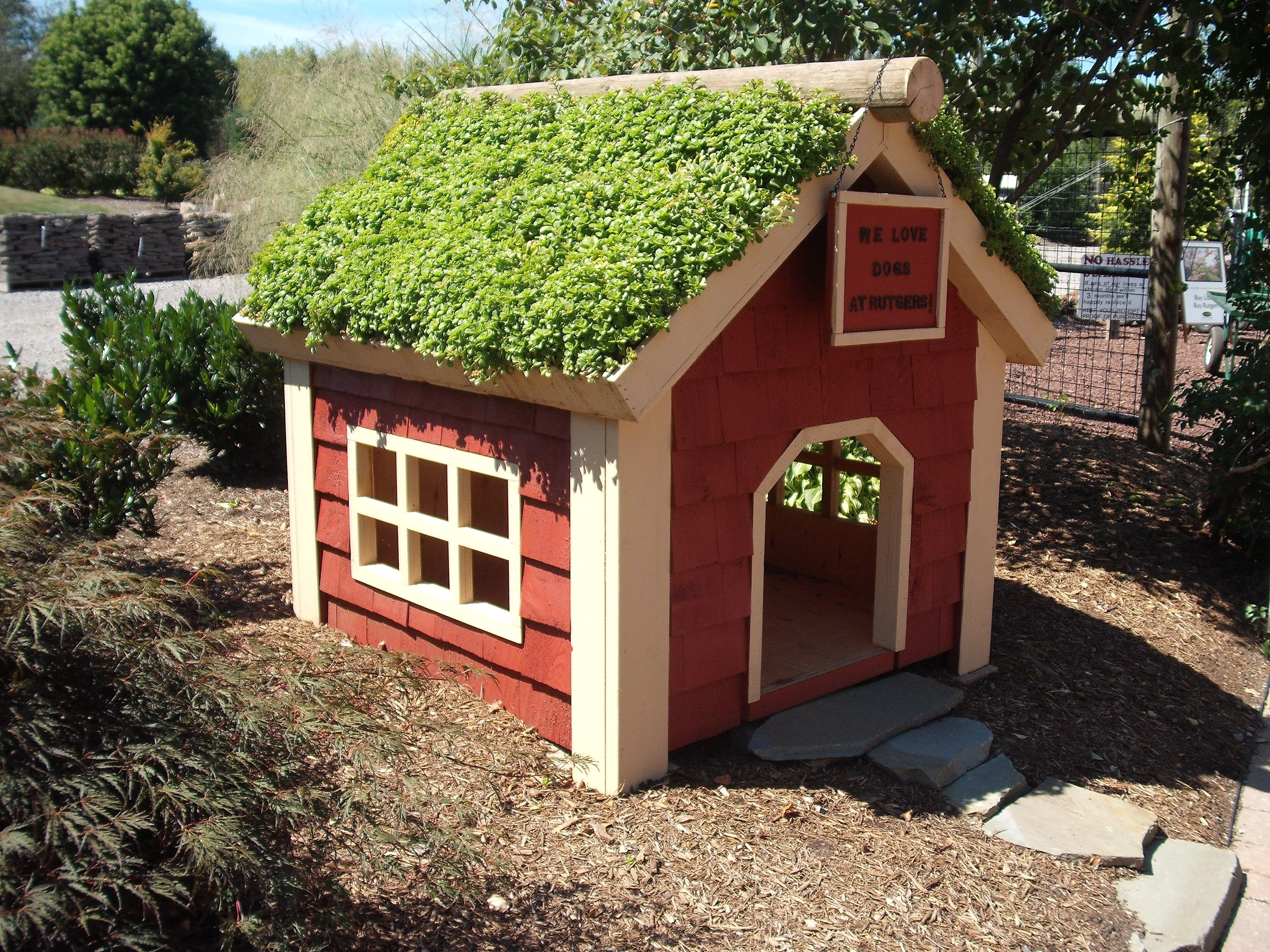 Tips For Gardening With Dogs Here S How To Keep Them And You