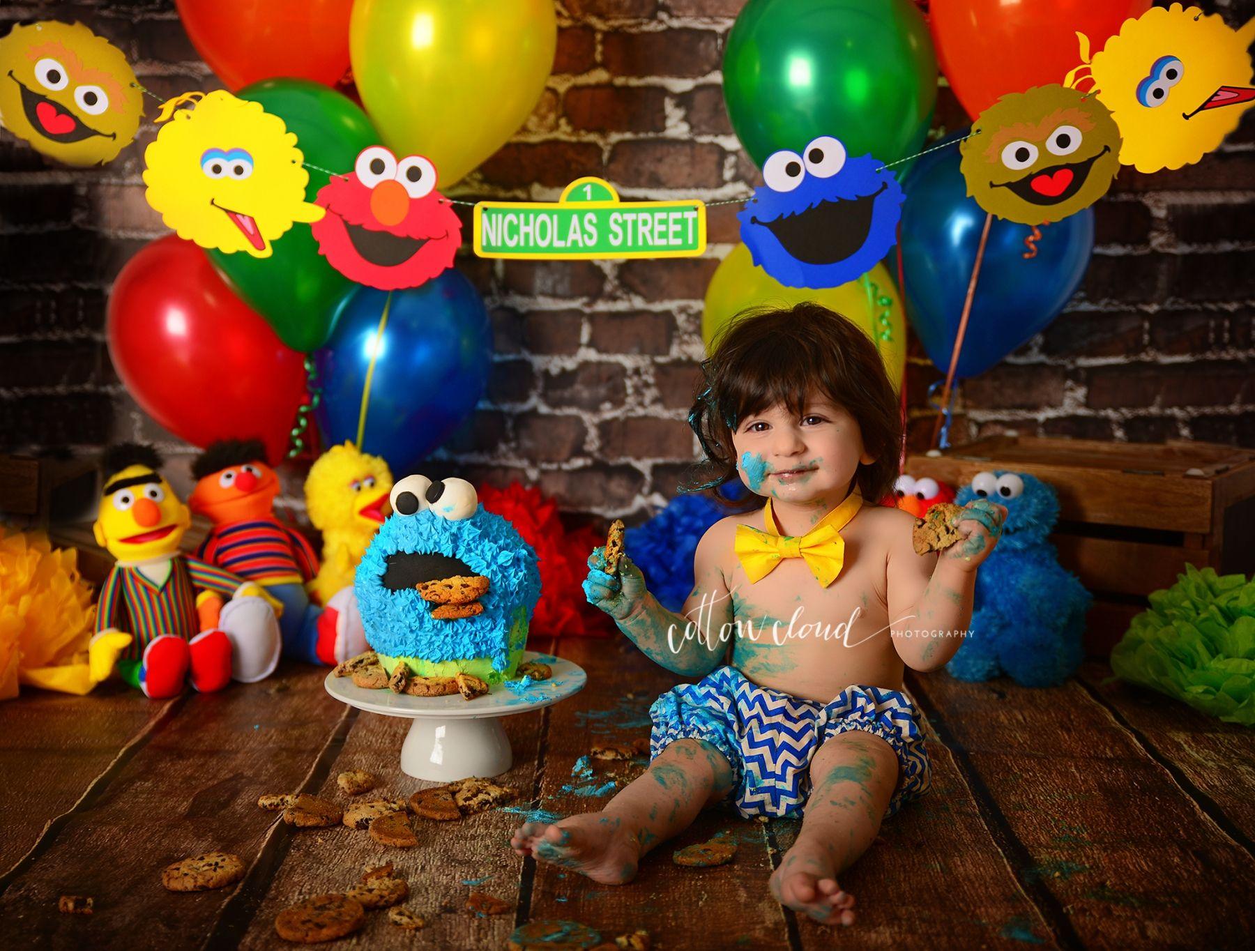 Birthday Cakes Macarthur ~ Cake smash photography sydney campbelltown macarthur sesame street