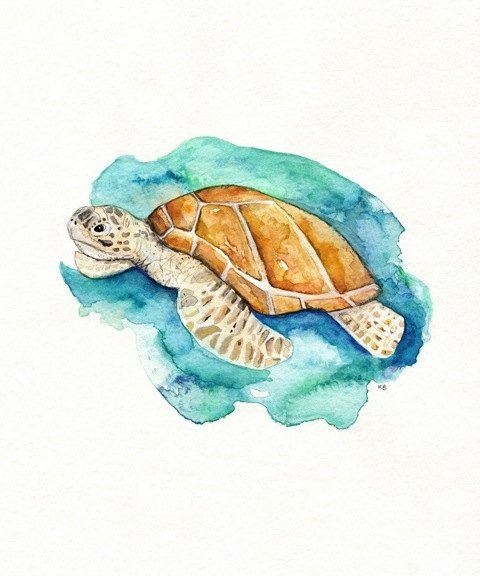 Sea Turtle Watercolor Print Teal Light Green Aqua Tan Sea Ocean