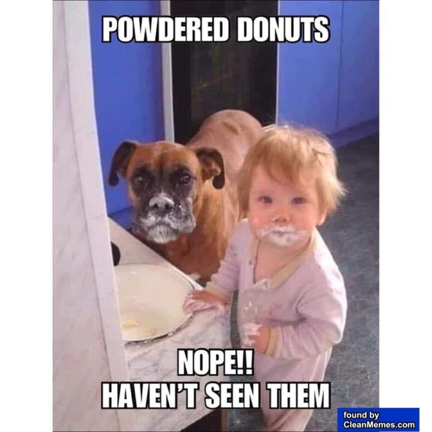 Clean Memes 05 13 2020 Afternoon Funny Dog Memes Nurse Memes Humor Funny Animal Memes