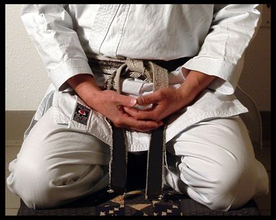 The ultimate goal of Hapkido is to conquer your opponent's intention through harmony. You can achieve harmony only when your own mind controls every aspect of your body. The secret of harmony lies in the unity of the mind, body and technique, the mind being the most important of the three.