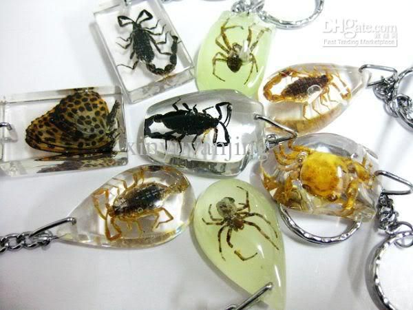 Wholesale Mixed /lot unique crystal artificial amber insect Keychain keychains and car keyring, Free shipping, $1.18-1.71/Piece | DHgate