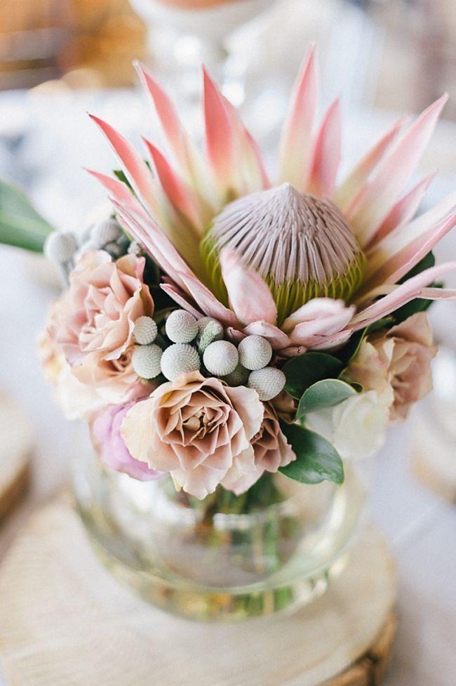South Africa Destination Weddings Protea Wedding Protea Flower Wedding Flowers