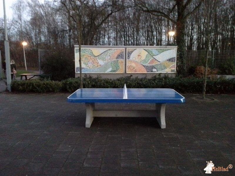Pingpongtafel Afgerond Blauw bij Bonhoeffer College in Enschede