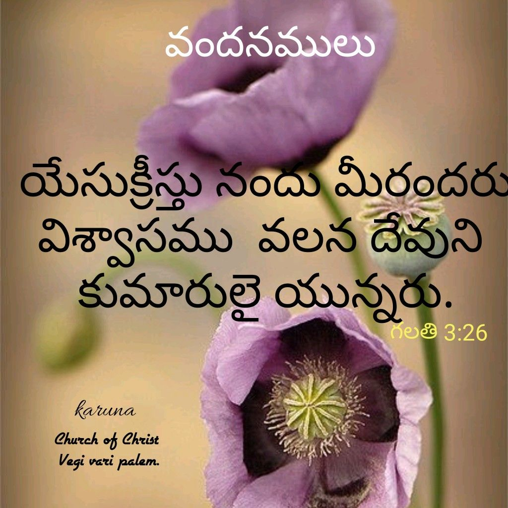 Pin By Karuna On Telugu Bible Verses