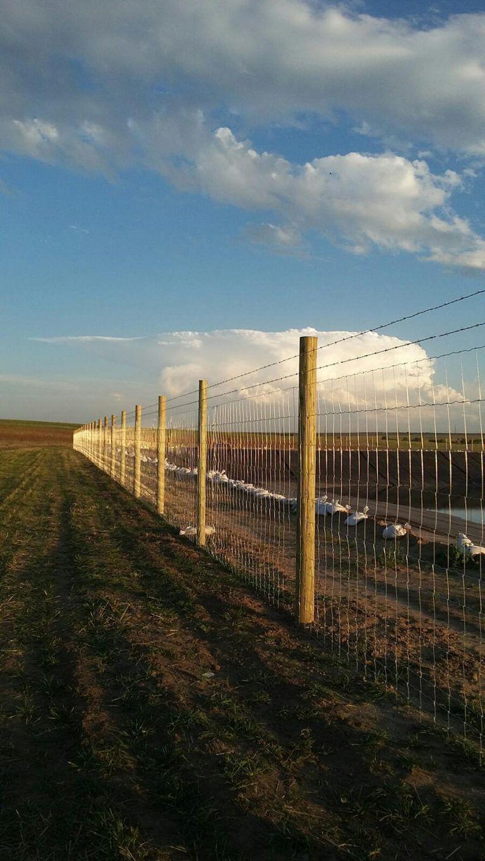 Farm Fencing | Farm Fencing | Pinterest | Farm fencing, Field fence ...