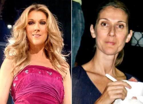 95 Celine Dion Ideas Celine Dion Celine Céline Marie Claudette Dion