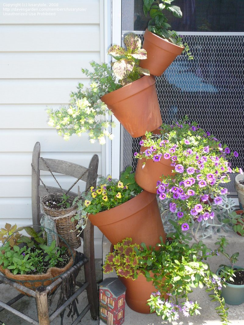 Stacking Flower Pots Want To Incorporate This Somehow Maybe Only Two Or Three At A Time Though Stacked Flower Pots Flower Pots Backyard Trampoline