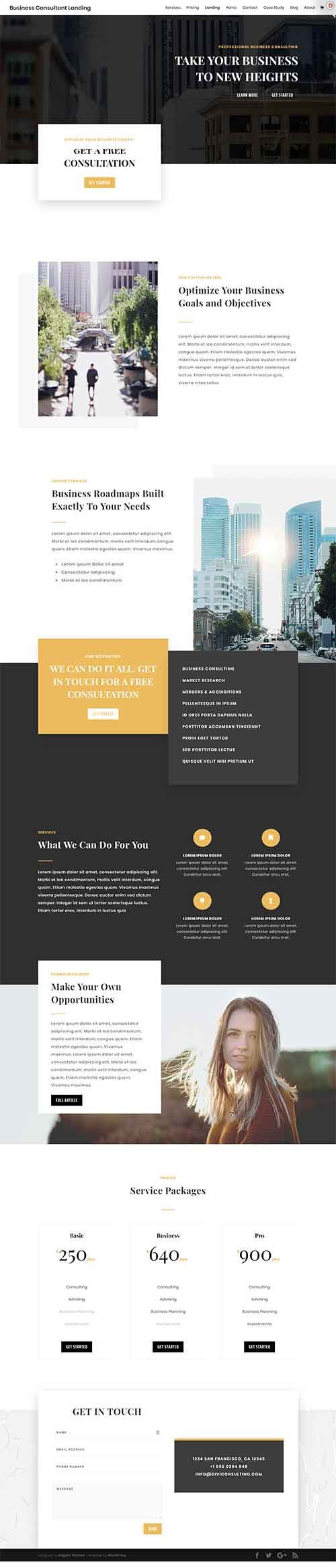 Biz Consultant (Free Layout Pack | Free Divi Layouts