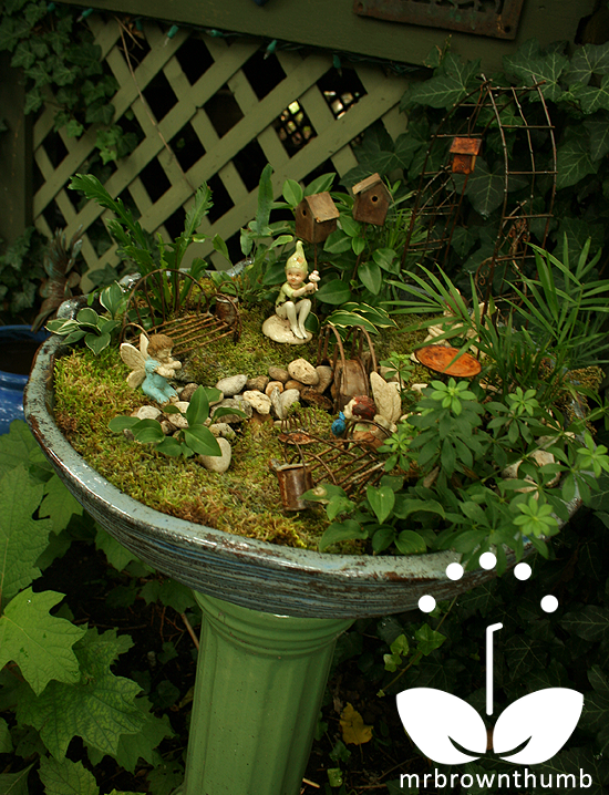 17 Best 1000 images about Fairy Garden on Pinterest Gardens Fairy