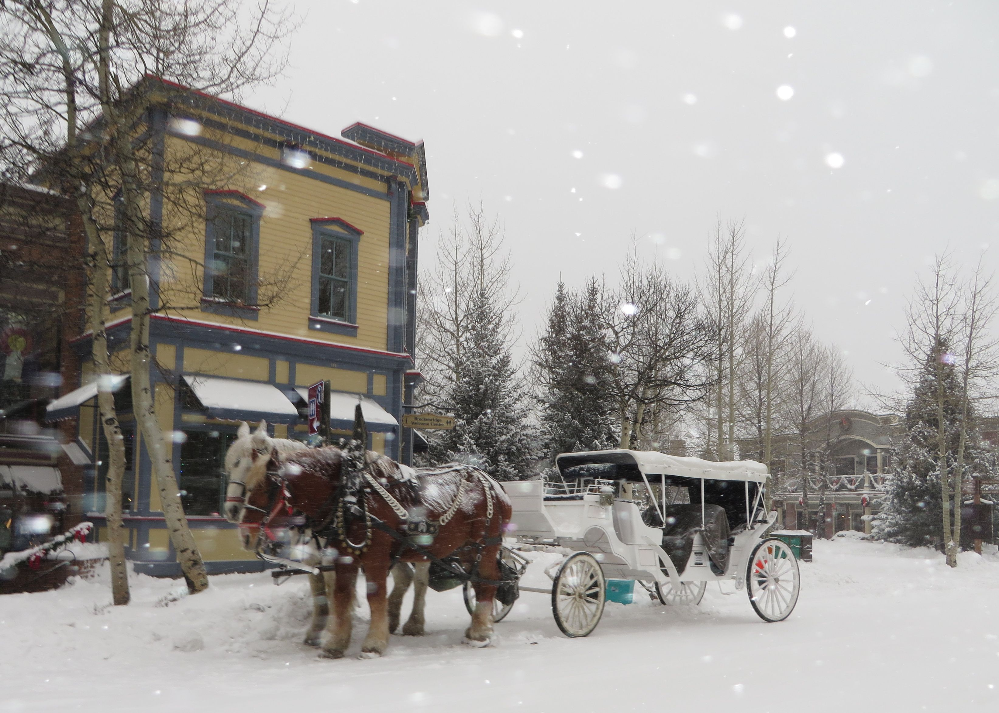 Spend the holidays in Breckenridge, CO.