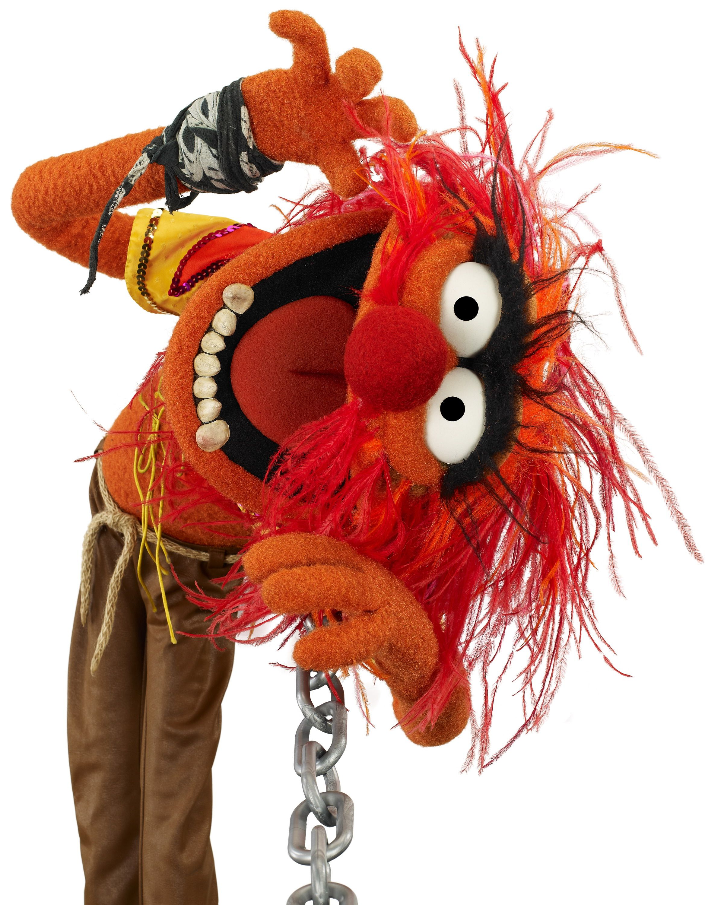 Muppet Animal Picture