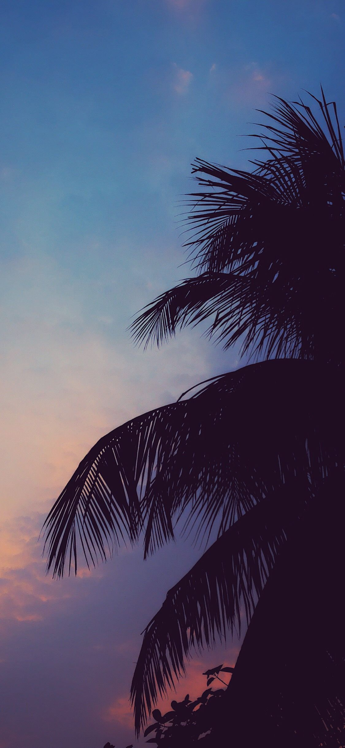 Chill Vibes Chill Wallpaper Iphone Wallpaper Tumblr Aesthetic Sky Aesthetic