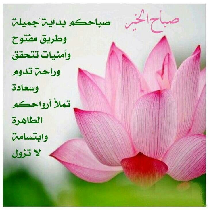 وردة صباح الخير