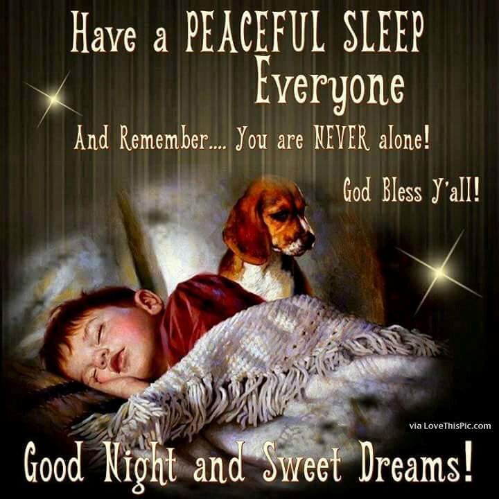 Have A Peaceful Sleep Everyone Good Night Sister Good Night Prayer Good Night Everyone