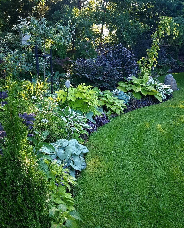 Idea For North Side Of House Cottage Garden Design Backyard Landscaping Designs Landscape