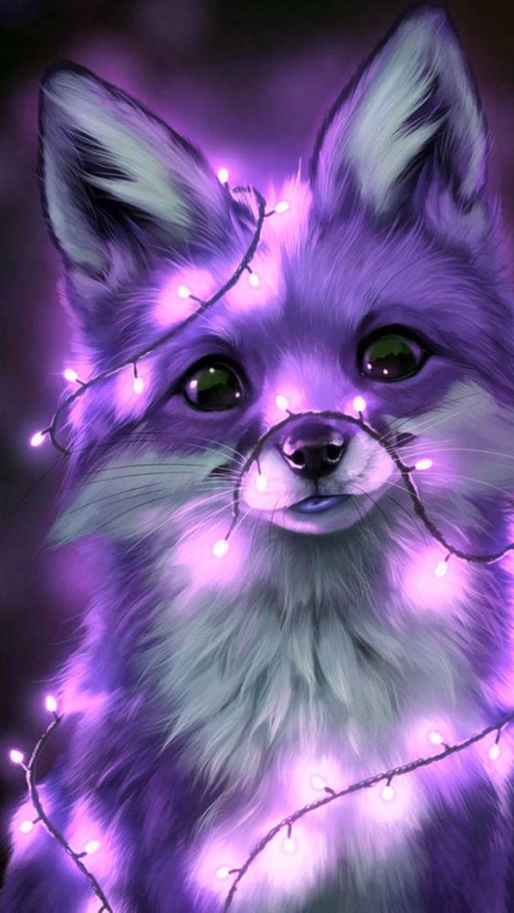 Fox wallpaper by KITcatKITTYcat - 28bb - Free on ZEDGE™