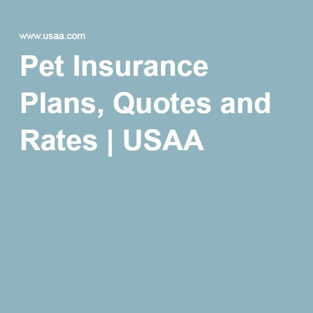 Pet Insurance Plans Quotes And Rates Usaa Pet Insurance Dogs Pet Insurance Insurance