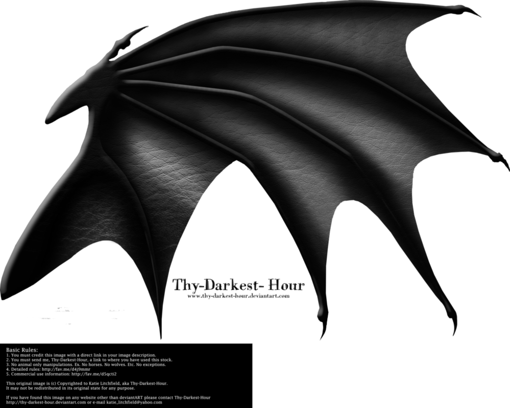 Dragon Wings 03 Dragon Wings Wings Drawing Wings