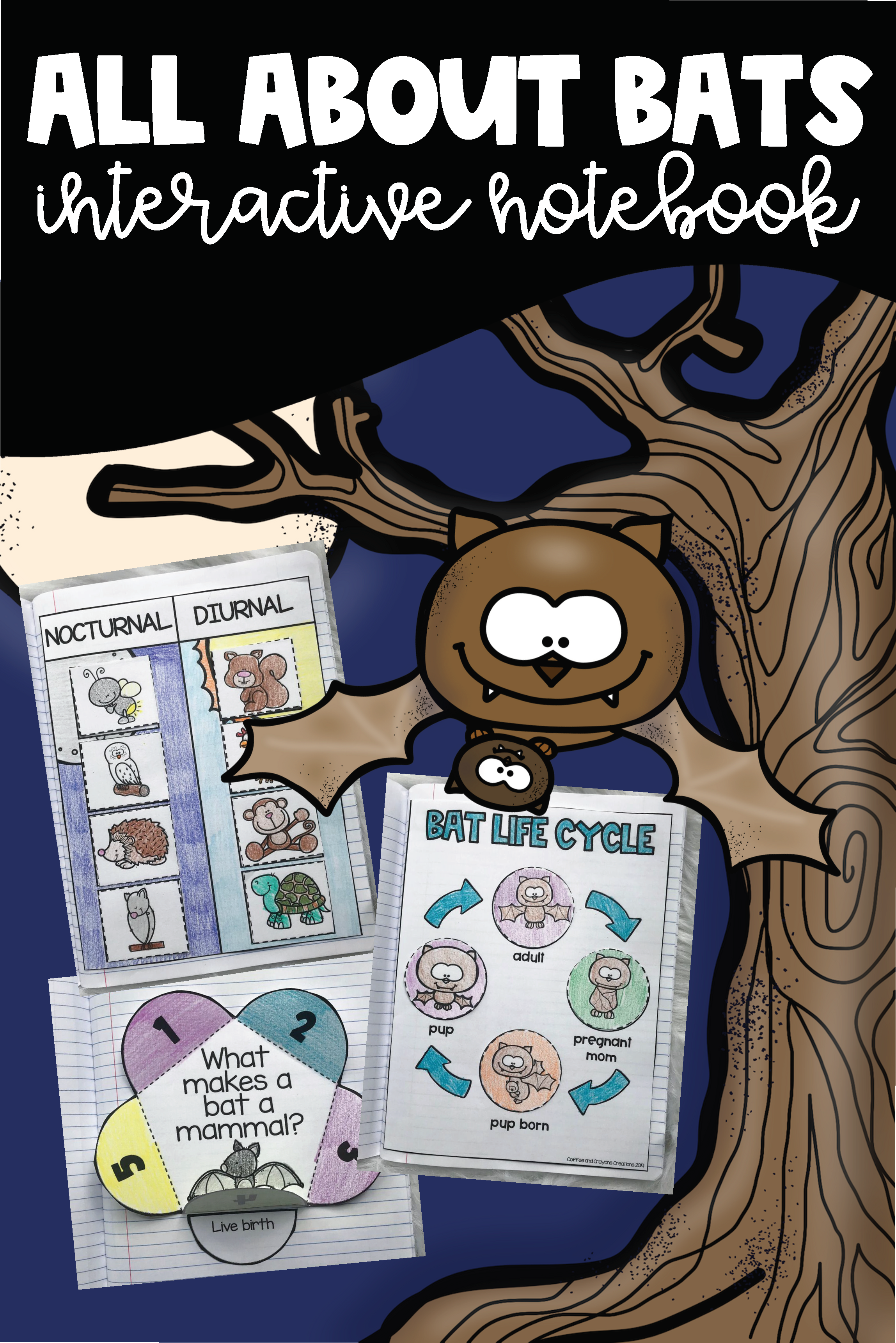 All About Bats Science Interactive Notebook And Poster Set