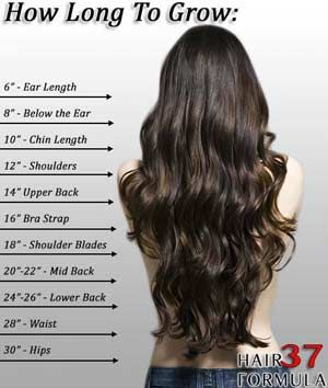 Hair Growth Calculator How To Make Your Hair Grow Faster Long Hair Styles Hair Styles Hair Chart