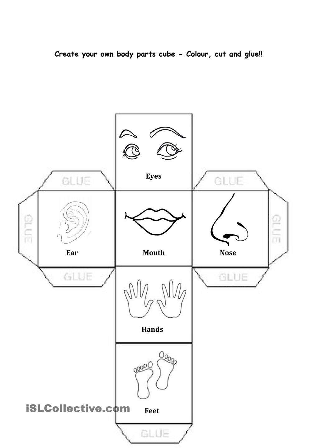 Body Parts | science kg | Pinterest | Bodies, English and Daycare ...