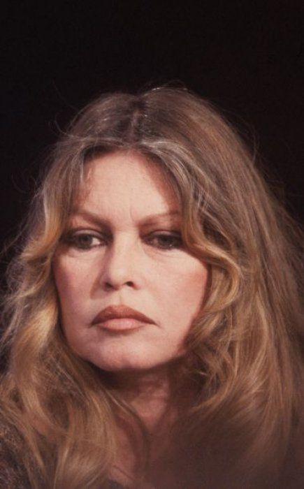 1979 - En 1973, après L'Histoire Très Bonne Et Très Joyeuse De Colinot Trousse-Chemise de Nina Companeez, Brigitte Bardot décide de mettre un terme à sa carrière cinématographique pour se consacrer à la défense des animaux. Ses apparitions se feront alors de plus en plus rares.