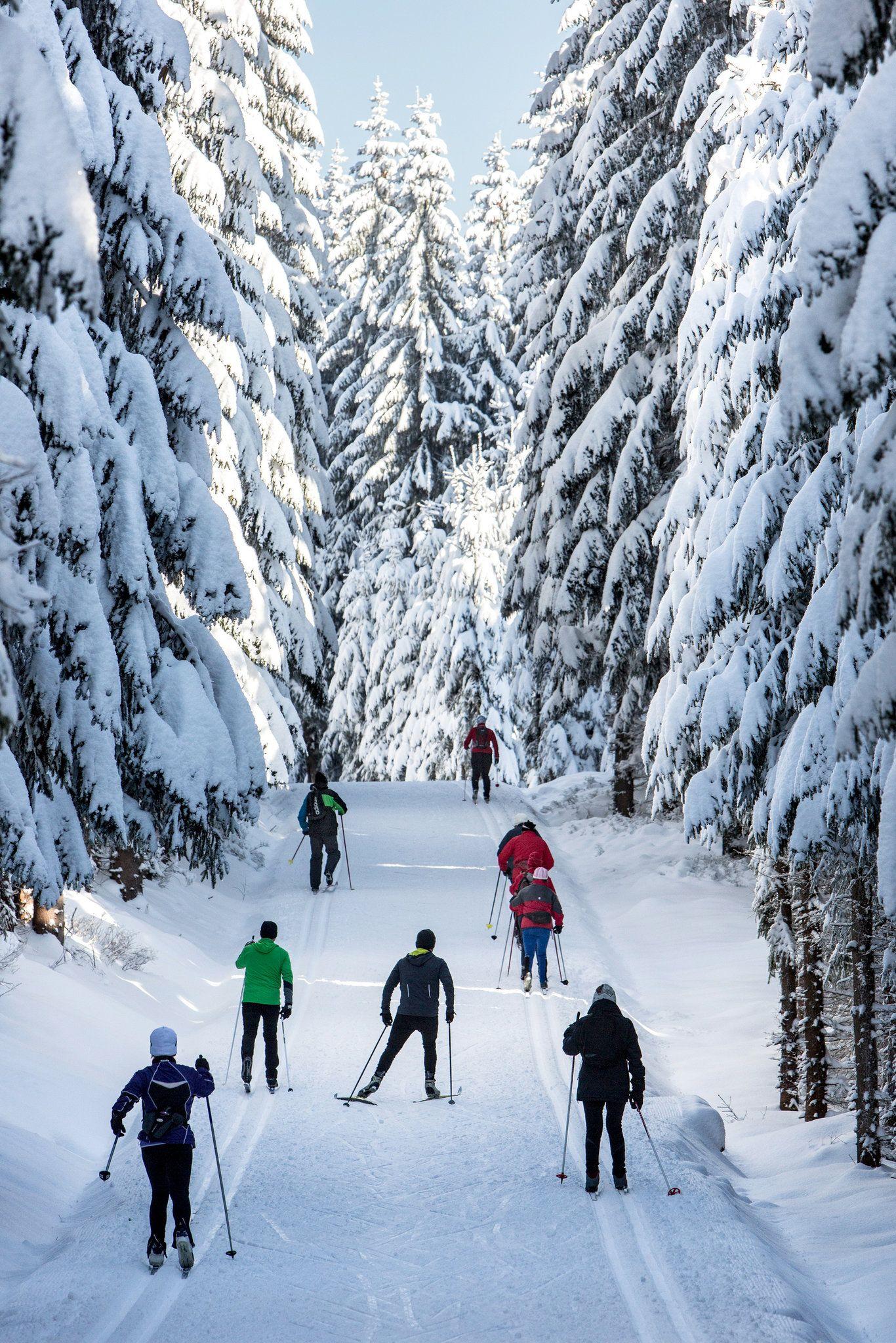 Bohemia S Secret Spot For Cross Country Skiing Cross Country Skiing Ski Europe Skiing Photography