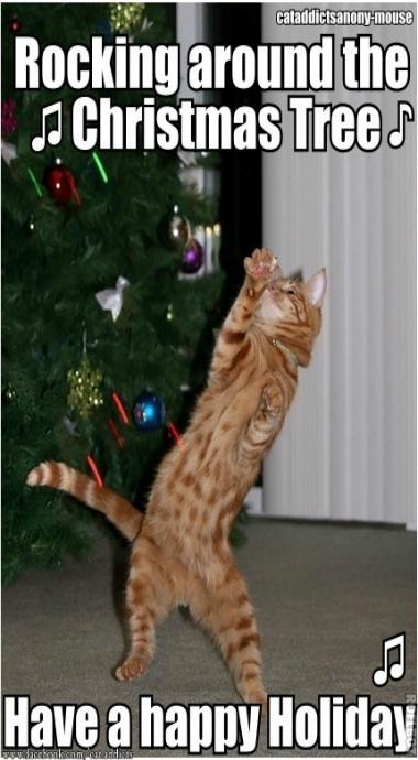 Happy Holidays Christmas Cat Memes Christmas Cats Funny Christmas Tree