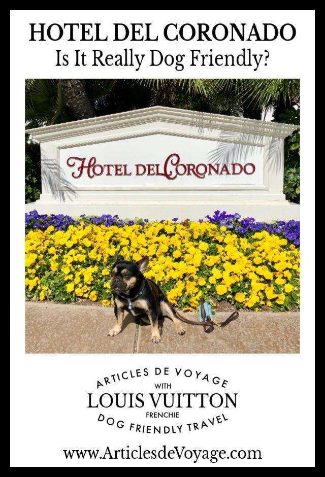 Is San Diego S Famous Hotel Del Coronado Really Dog Friendly Read About Louis Stay On The Blog Www Articlesdevoyage Com Hotel Del Coronado Dog Friendly Hotels Dog Friends
