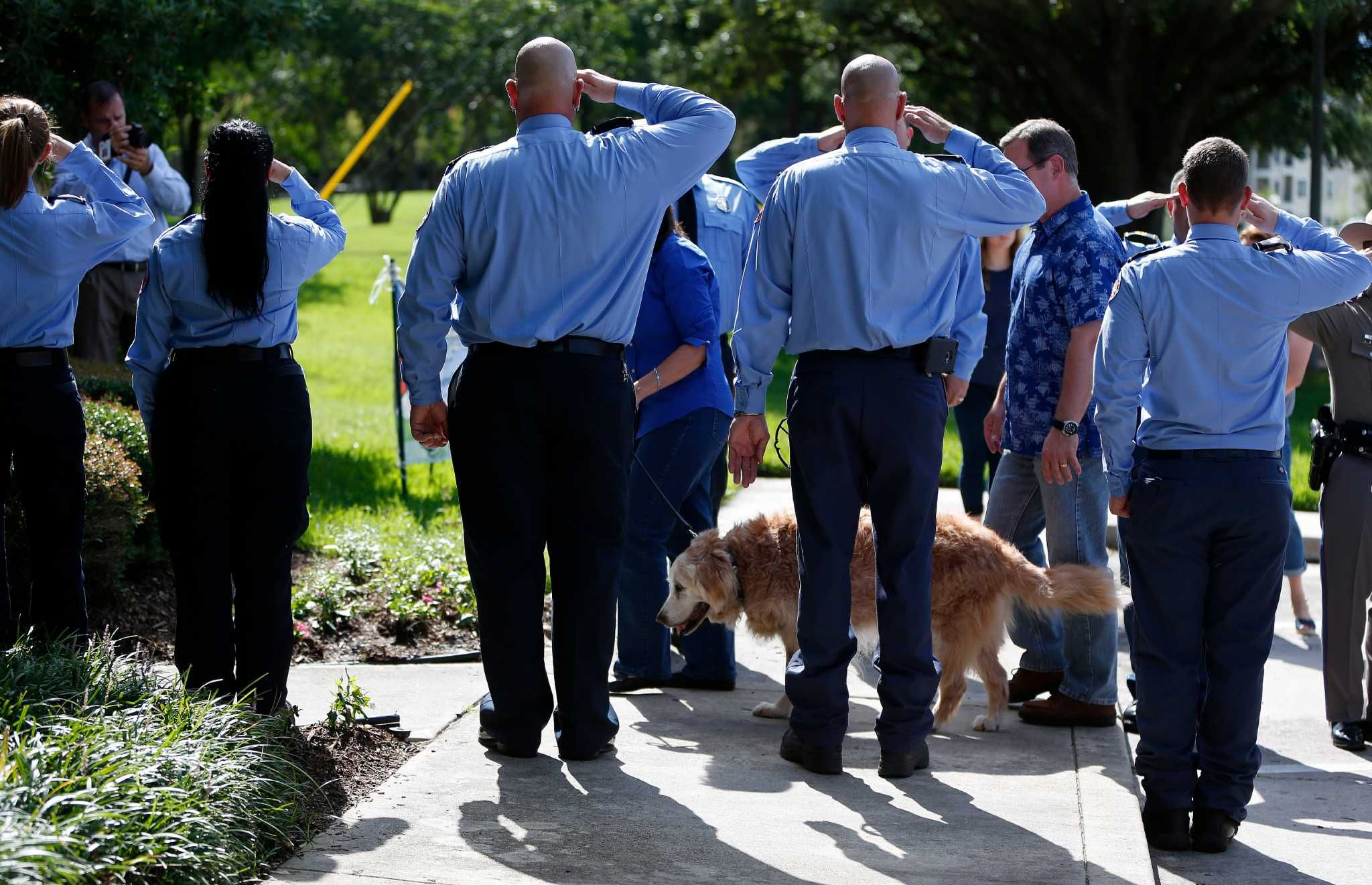 Last known 911 search dog euthanized in houston area