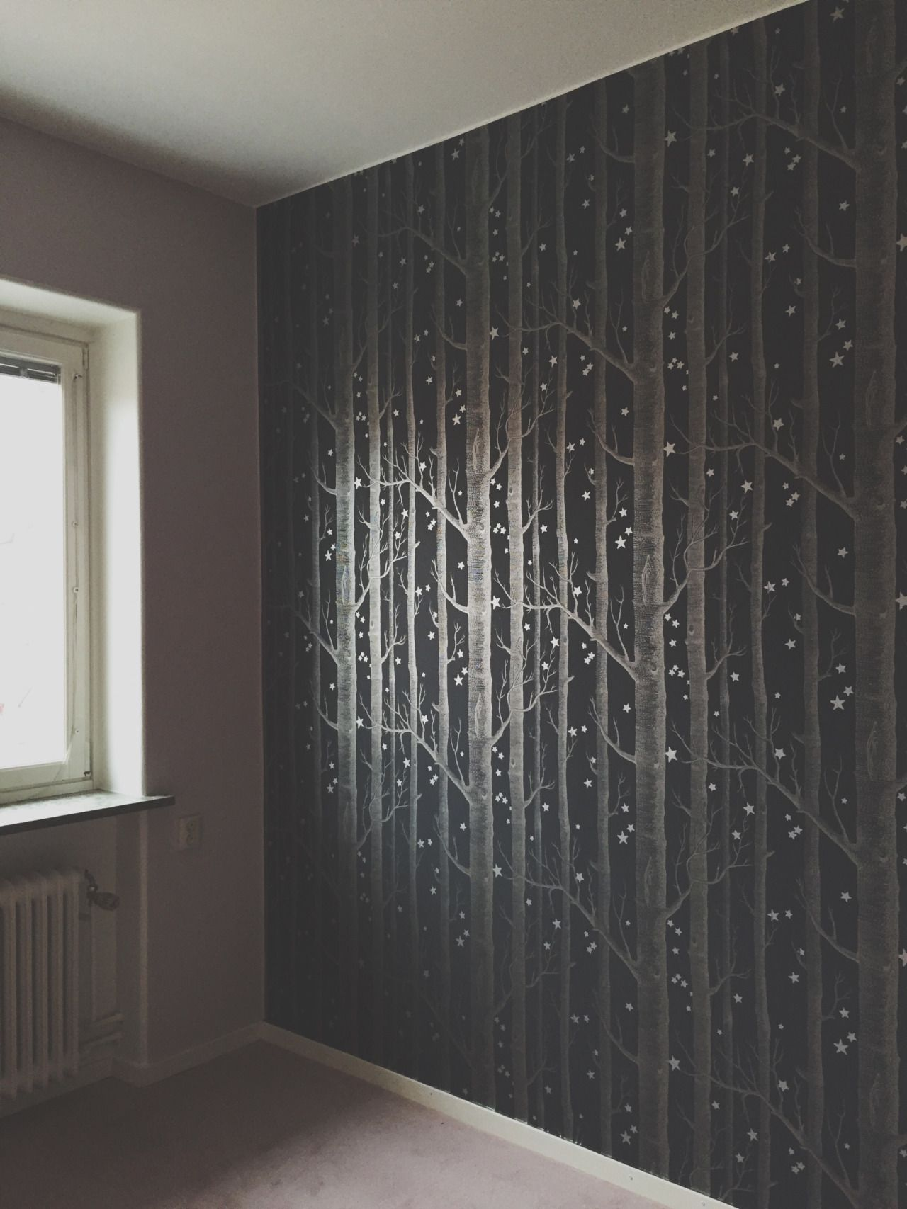 Wood & Star wallpaper Whimsical collection by Cole & Son