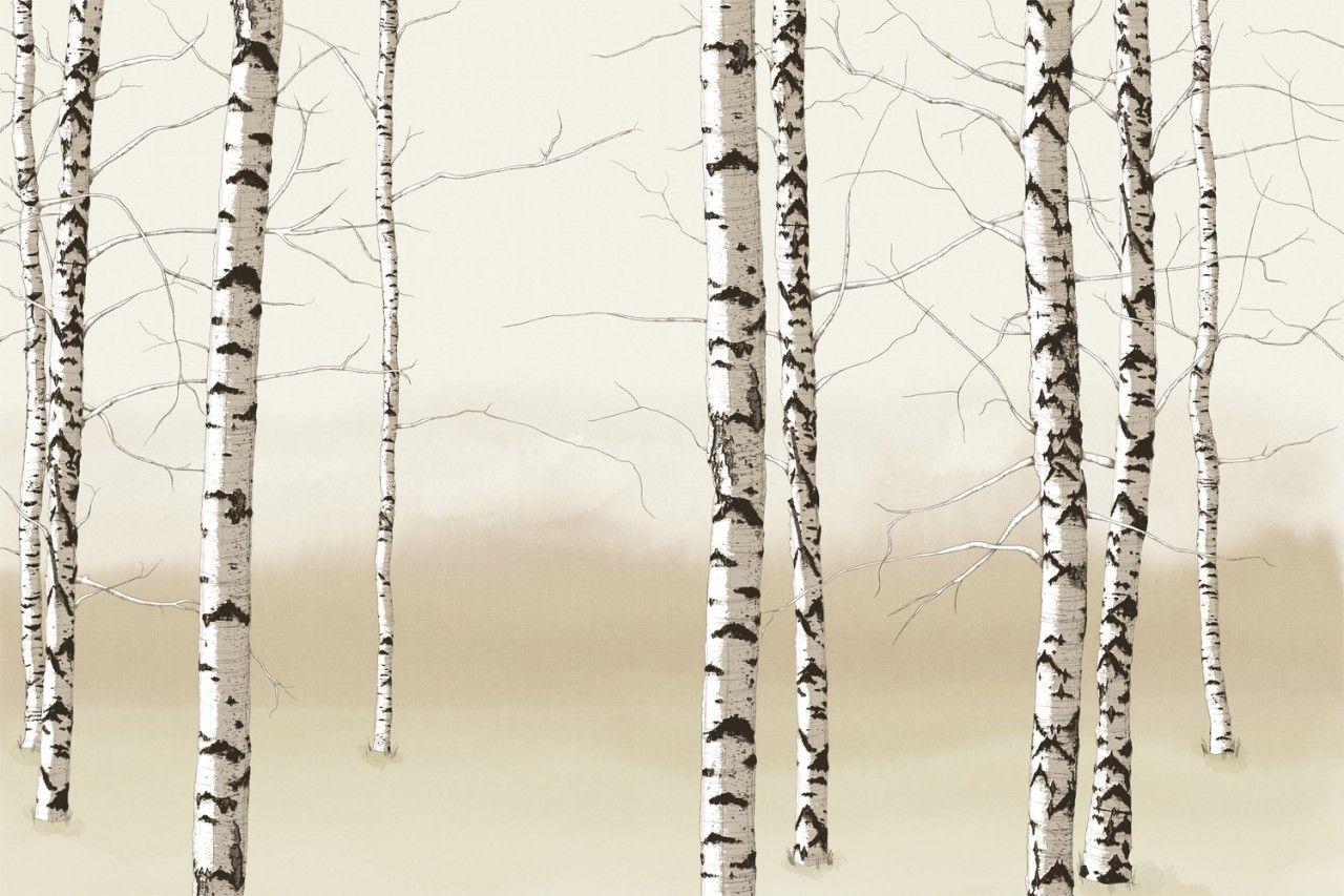 3d Birch Tree Wallpapers Jpeg Kuva 1280 853 Kuvapistett Pienennetty 71