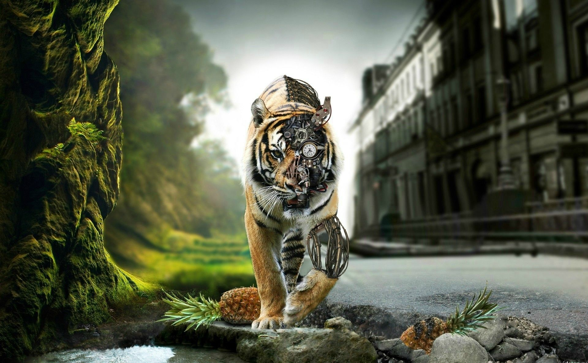 Steampunk Backgrounds In 2019 Tiger Wallpaper Robot