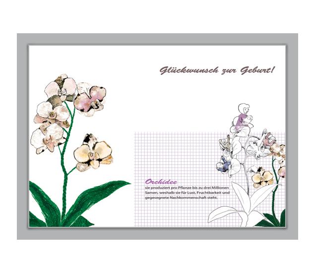 Orchideen Glückwunschkarte zur Geburt - http://www.1agrusskarten.de/shop/orchideen-gluckwunschkarte-zur-geburt/    00016_0_1052, Baby, Blumen, Blumengruß, Geburt, Geburtskarte, Grußkarte, Klappkarte, Orchidee00016_0_1052, Baby, Blumen, Blumengruß, Geburt, Geburtskarte, Grußkarte, Klappkarte, Orchidee