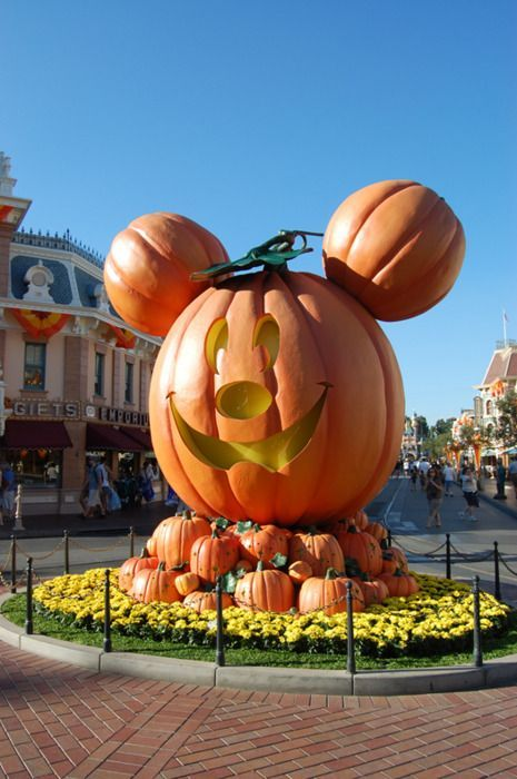 Halloween Fall Pumpkin around the world | Disneyland Halloween