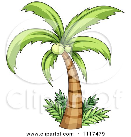 Vector Clipart Coconut Palm Tree And Ferms Royalty Free Graphic