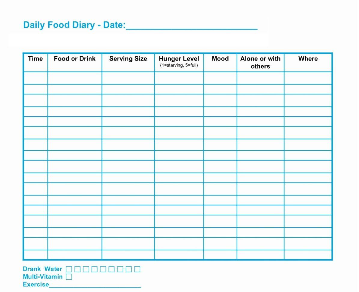Diet Spreadsheet Template Spreadsheet Template Templates